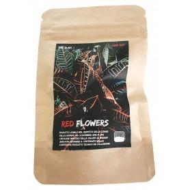 CANAPA SATIVA RED FLOWERS CBD INFIORESCENZA ERBA LEGALE DI ALTA QUALITA'