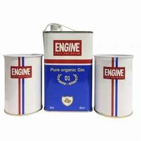 GIN ENGINE CL.50 MIT 2 METALLGLAS