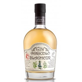 GIN AGRICOLO BLAGHER CL.70